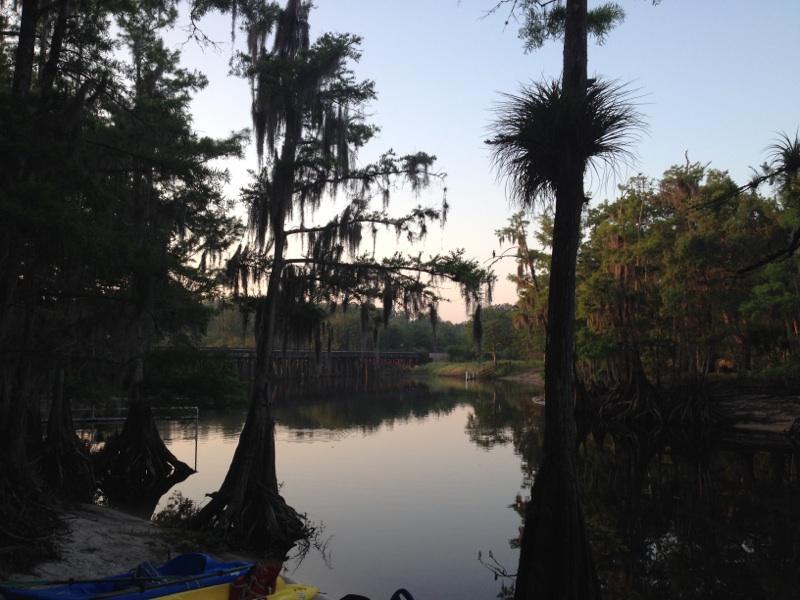 Rewilding Witchcraft: Speaking from the Swamp, Part2